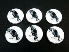 """6 LARGE Crow  Buttons. Handmade by Me.  Black Bird or Raven. Handmade By Me. Novelty or Craft Supplies. 1"""" or 25 mm. Washable, Dryer Safe. by buttonsbyrobin on Etsy"""