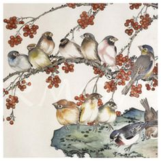 chinese birds ~ chinoiserie
