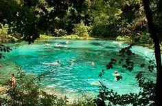 Cool Natural Springs in Florida