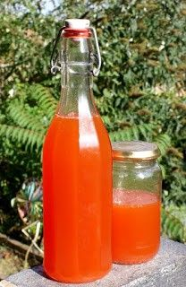 Rose Hip Syrup - lightly enchanted: chop the hips, cover with twice as much water as hips, boil for 10 minutes and allow to steep for 20 minutes. Strain liquid into a pot and add equal amount of sugar and cook for 5 minutes. Canning Soup Recipes, Pressure Canning Recipes, Rosehip Syrup, Hawaiian Dishes, Perennial Vegetables, Fruit Seeds, Fall Drinks, Edible Food, Flower Food