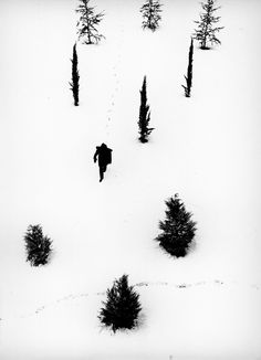 Inverno x Alfredo Camisa.