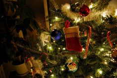 Would you rather have a 'real' or 'artificial' Christmas tree??