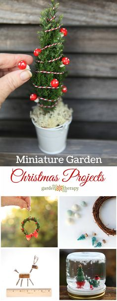 Best Diy Crafts Ideas Christmas Miniature Garden Project and Ideas. From teeny tiny evergreen wreaths to lit up decorated miniature Christmas trees, here are some of the projects that will whisk you away to a happy little place. Miniature Christmas Trees, Christmas Fairy, Merry Little Christmas, Christmas Love, Christmas Items, Christmas Crafts For Kids, All Things Christmas, Holiday Crafts, Holiday Fun