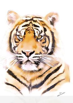 wildlife nursery print, wildlife nursery art, animal print, animal art, tiger print, children's wall art, kids wall art, big cat prints