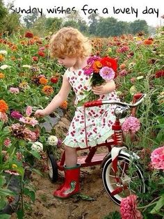 Picking flowers - too precious!!