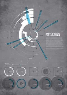 Portable data infographic