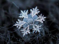 One snowflake