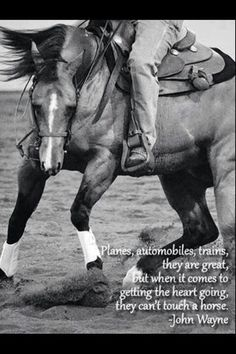 John wayne quote on horses