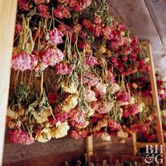 Enjoy Your Peonies for Longer by Drying Them is part of Dried hydrangeas - Learn how to dry peonies Save these northernclimate favorites, and display bowls of pink, red, white, or yellow petals yearround Dried Flower Bouquet, Dried Flowers, Types Of Flowers, Cut Flowers, Press Flowers, Flowers Garden, Spring Flowers, Hortensien Arrangements, Wedding Centerpieces Mason Jars