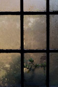 - 'till the sky became a color never named and changed my world - again - a new day. Rainy Night, Rainy Days, Rainy Mood, Rainy Window, I Love Rain, Rain Photography, Photography Contract, Photography Settings, Photography Classes
