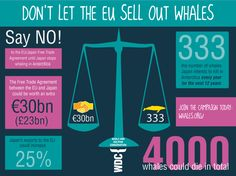 Say No! to EU-Japan trade agreement until whaling stops!