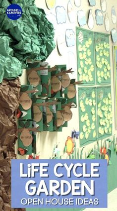 See how we turned our hallway into a life cycle garden for our end of the year open house. Students displayed their projects and life cycle science activities for butterflies, plants, and frogs. Science Experiments Kids, Science Lessons, Science Activities, Sequencing Activities, Science Resources, Meet The Teacher Template, Family Math Night, Teaching Plants, Curriculum Night