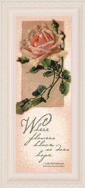 Catherine Klein Rose Pink Yard Mini Larga Lámina-