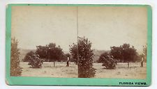 Orange City Florida Stereoview By MM & WH Gardner of Atlanta Georgia #22