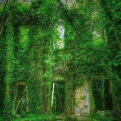 There is something beautiful about nature taking back old ruins. This incredible. by Galway Take Back, Something Beautiful, Abandoned, Castle, The Incredibles, Earth, Photo And Video, History, Architecture