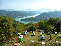 Το μελισσοκομείο στην οροσειρά της Πίνδου για την ανθοφορία της ερείκης, με φόντο τη λίμνη του Πουρναρίου.