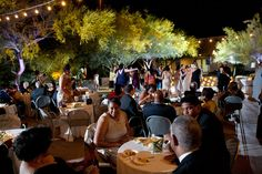 A beautiful wedding at the Desert Botanical Gardens Phoenix   Film Photographers   Photo By Keith Pitts Photography