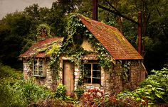 """River Road Railside Cottage by Yvonne Roberts    """"An abandoned building by the side of the road near Three Mile Island, central Pennsylvania. I haven't been able to find out any info about this cool little shack. Have never seen anything like the little ornamental shelf over the window."""""""