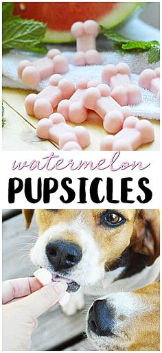 Posted by Watermelon Pupsicles Recipe- Summer pet treats frozen chilly pet dog pupsicles. Dog treats to make at home. Dog Biscuit Recipes, Dog Treat Recipes, Dog Food Recipes, Summer Dog Treats, Frozen Dog Treats, Puppy Treats, Diy Dog Treats, Treats For Puppies, Dog Cookies