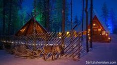 Los renos esperan a Papá Noel en la Aldea de Papá Noel, en Laponia