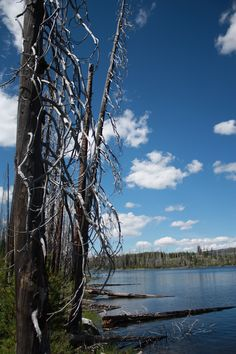 Hazard Lake, Idaho