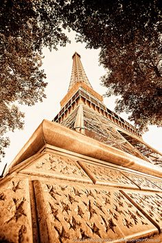 Eiffel Tower - Sepia & Surrounded