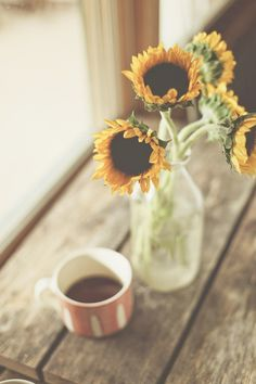 fenetre, fleur, flor, flower, girasol, primavera, printemps, spring, sunflower, vase, ventana, window, jarron, tournesol