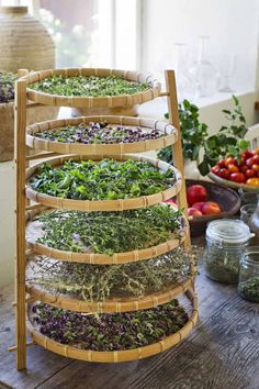 70 affordable backyard vegetable garden design ideas vegetable garden ideas herbs that grow together in a pot
