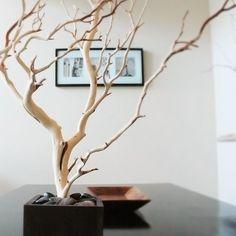 "30"" Natural Tree Jewelry holder"