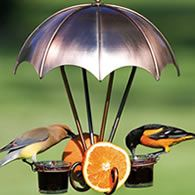 Oriole feeder...great for summer