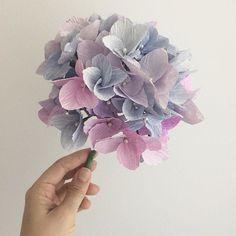 A hortênsia é uma das flores que mais me dá trabalho para confeccionar. Ela tem pelo menos 50 flores de 4 pétalas pequeninas, cortadas e montadas à mão. É um trabalho que chega a ser meio monótono.  Mas quando eu começo a arranjar as florzinhas para formar esse buquê redondinho... tudo faz sentido! E por isso é uma das flores que me dá mais alegria quando fica pronta!  Essa eu dedico pra cunha que mais amo no mundo e é apaixonada por Hortênsias, @lucytoledo #paperflowers #paperhydrangea…