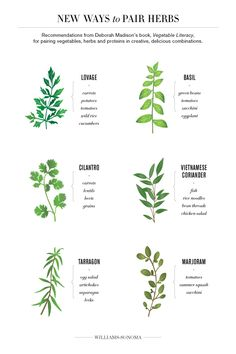 Deborah Madison's New Ways to Pair Herbs from Williams Sonoma's blog - Yummy and fresh ways to use all the summer produce