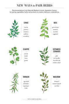 New Ways to Pair Herbs