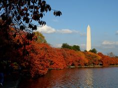 ~ Visit Washington DC in the fall.