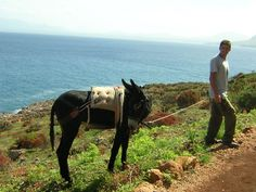 Transportation in Alicudi_Aeolian Islands_Sicily