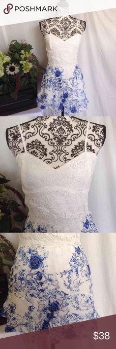 Beautiful Lace Bodice Wide Leg Romper Lace Bodice. Sheer lace back with a zipper. Lined. Cobalt and white tropical shorts. Wide Leg. Size small. Like new Pants Jumpsuits & Rompers