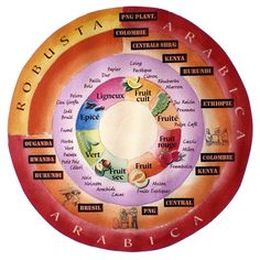 roue des aromes du café