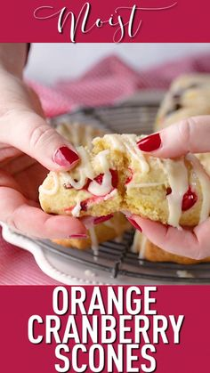 Homemade Orange Cranberry Scones: moist, tender, & even better than Starbucks! L… Homemade Orange Cranberry Scones: moist, tender, & even better than Starbucks! Loved the combination of fresh and dried cranberries. Baking Recipes, Cookie Recipes, Dessert Recipes, Easter Recipes, Scone Recipes, Baking Ideas, Patisserie Vegan, Cranberry Orange Scones, Cranberry Bars