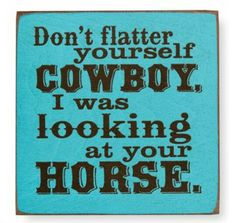 Don't flatter yourself cowboy,..