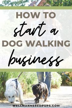 How to start a dog walking business from scratch - Tips from a professional dog walker.