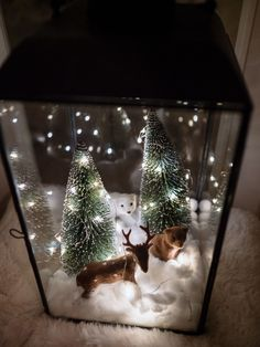 Christmas Farm, Christmas Lanterns, Miniature Christmas, Diy Christmas Gifts, Christmas Projects, Christmas Time, Christmas Wreaths, Lantern Craft, Lanterns Decor