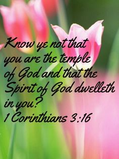 Know ye not that you are the temple of God and that the Spirit of God dwelleth in you? 1 Corinthians 3 :1 6