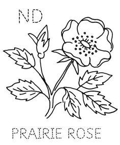 Embroidery - State flower quilt block: North Dakota, Prairie Rose