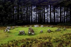 Dartmoor has the largest collection of Stone Age ruins anywhere in the UK. You can't move for hut circles! Grimspound is the best preserved; Places To Travel, Places To Go, Mists Of Avalon, Cottages For You, Dartmoor National Park, Devon And Cornwall, Plants Are Friends, Stone Age