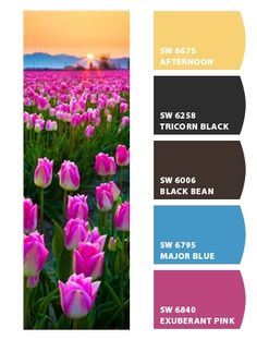 Blue HOuse, Yellow Porch Floor Pink Door, Tricorn Black Shutters, Black Bean Posts Paint colors from Chip It! by Sherwin-Williams