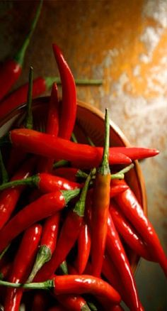 red hot chili peppers from new mexico Fruit And Veg, Fruits And Vegetables, Chile Picante, Hottest Chili Pepper, Taste The Rainbow, Stuffed Hot Peppers, Spice Things Up, Food Photography, Healthy