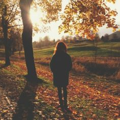 """""""Dear friend, do you remember the crunch of the leaves, the cold air nipping at our cheeks? The falling leaves were like a shield, dividing us from reality keeping us in a dream. You told me the golds and reds and oranges went with my eyes, they..."""""""