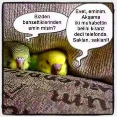 Tek Adresiniz: Muhabbetin Belini Kıralım :D Funny Happy, Funny Cute, Kid Memes, Funny Memes, Fowl Language Comics, Dark Humor Jokes, Meaningful Photos, Comedy Zone, Stupid Cat