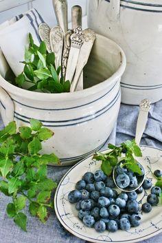 På denne årstiden bungner hager og skoger over av herlige frukter og bær...min favoritt er blåbær!  Ikke bare er de gode og sunne å sp...