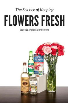 The Science of Keeping Flowers Fresh Science Fair Experiments, Stem Science, Science Fair Projects, Science For Kids, Steve Spangler Science, Kitchen Science, Vodka Shots, Valentines Day Activities, Aspirin